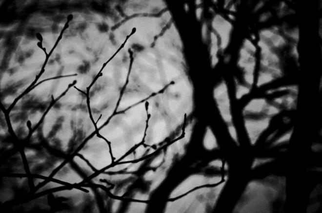 Breath_Adelaide Lin_01_20130201_0061