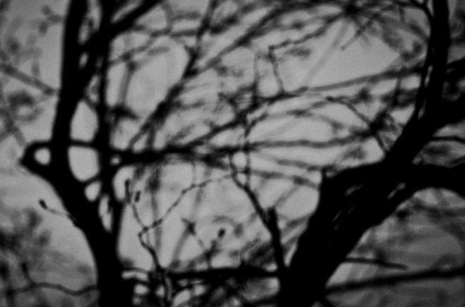 Breath_Adelaide Lin_07_20130201_0049